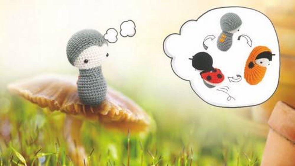Livre laly lala - Coccinelles, insectes et papillons